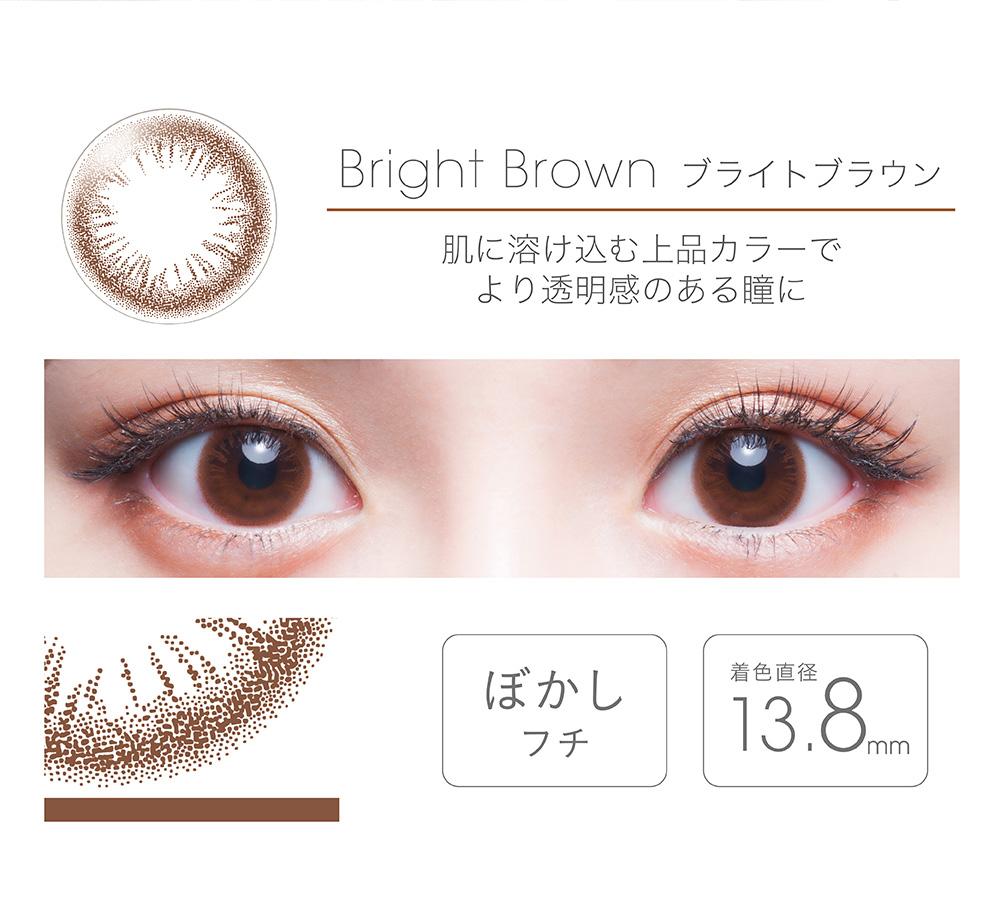 【Bright Brownブライトブラウン】FAIRY フェアリー ワンデー