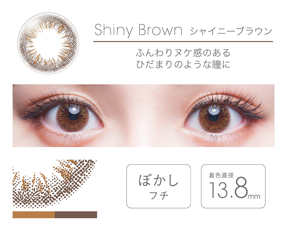 【Shiny Brownシャイニーブラウン】FAIRY フェアリー ワンデー