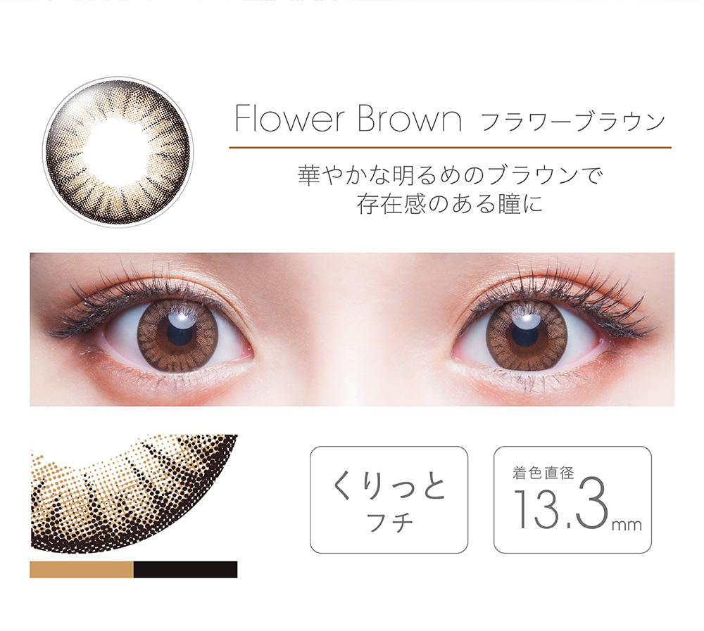 【Flower Brownフラワーブラウン】FAIRY フェアリー ワンデー