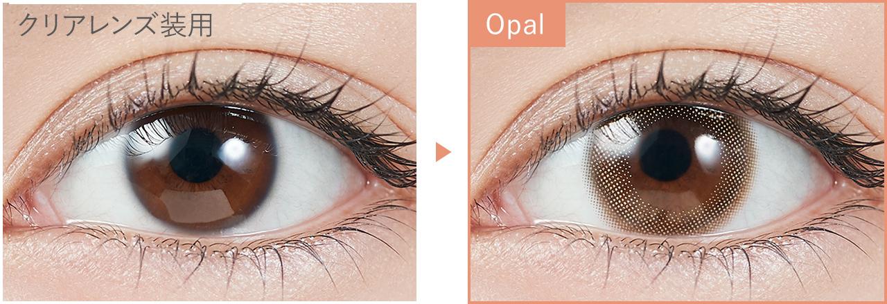 Opal オパール