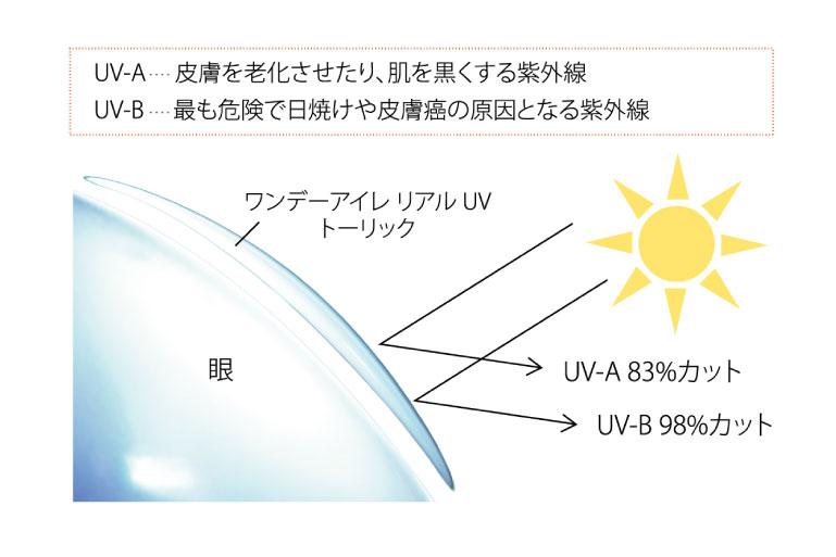 UV-A(皮膚を老化させたり、肌を黒くする紫外線)を83%カット、UV-B(最も危険で日焼けや皮膚癌の原因となる紫外線)を98%カット